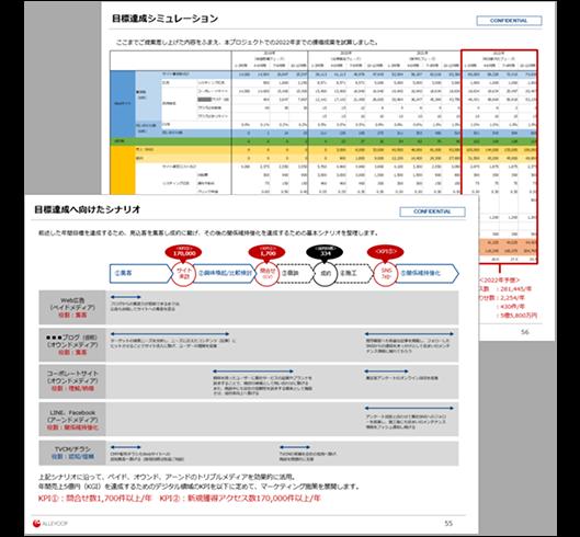 Webマーケティング戦略策定